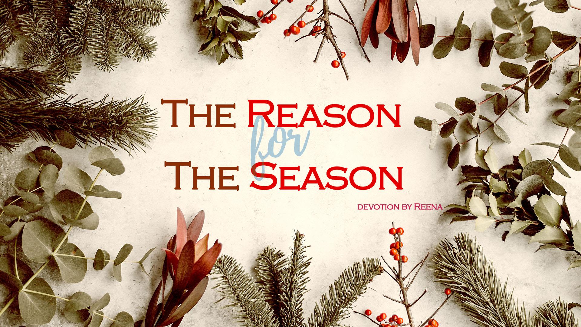 reason devotion